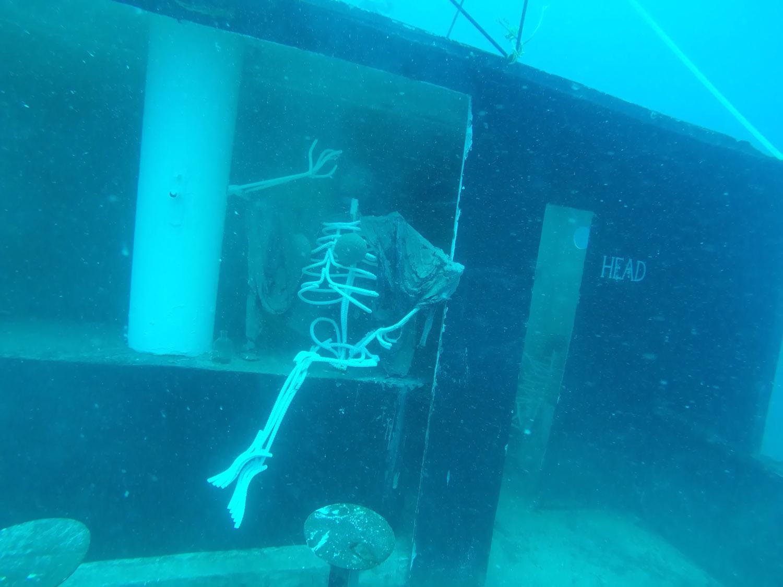 BVI Catamaran Diving