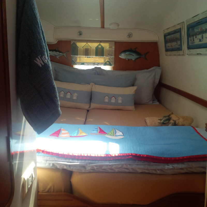 Used Sail Catamaran for Sale 2010 Jaguar 38 Layout & Accommodations