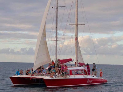 Used Sail Catamarans for Sale 1979 Spronk 50