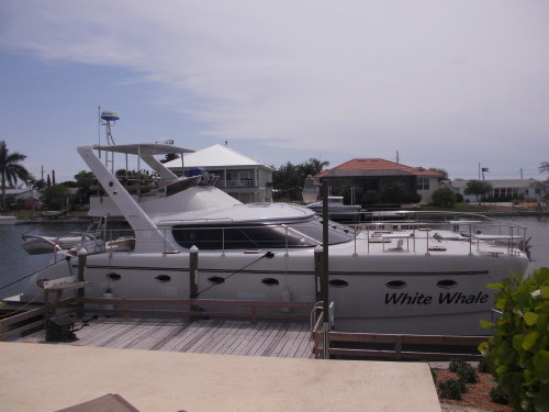 Catamarans WHITE WHALE, Manufacturer: CHARTER CATS SA, Model Year: 2009, Length: 48ft, Model: Prowler 48, Condition: Used, Listing Status: Catamaran for Sale, Price: USD 394000