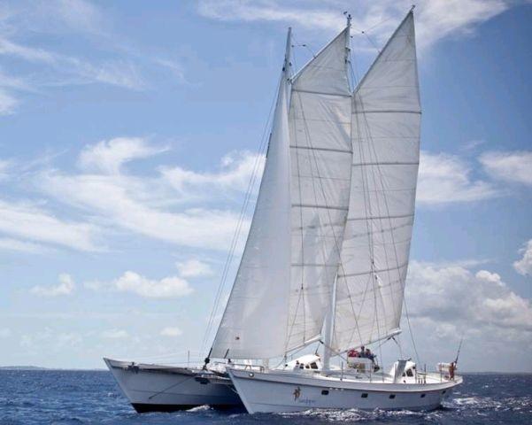 Used Sail Catamaran for Sale 2008 Gaff Rigged Schooner 64