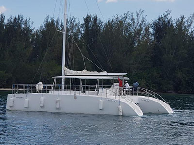 New Sail Catamaran for Sale  Day Charter 50