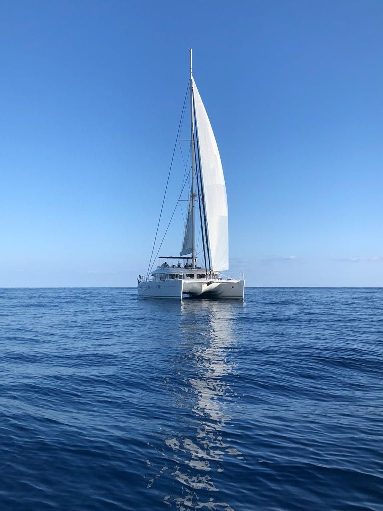 Used Sail Catamaran for Sale  Lagoon 620