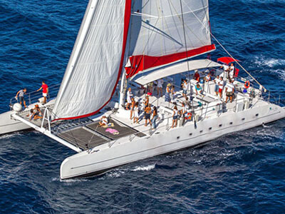 Sail Catamarans for Sale Taiti 80