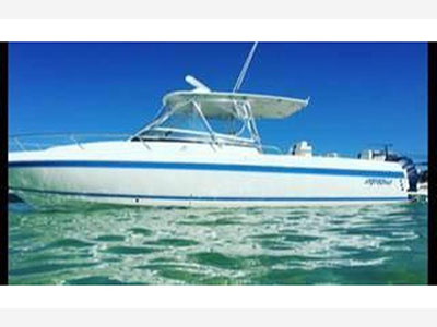 Used Power Catamarans for Sale 2006 310WA