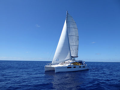 Used Sail Catamaran for Sale 2010 Leopard 46