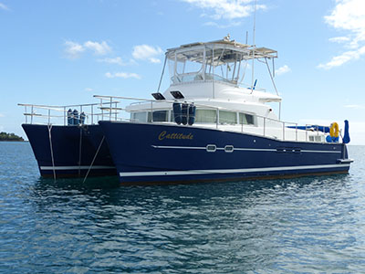 Used Power Catamaran for Sale 2003 Lagoon 43 Power